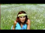 Yıldız Tilbe şarkıları Papatya Baharı klibi video klipleri şarkı klip sözleri dinle izle
